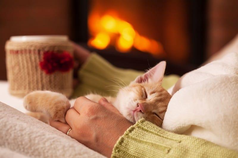 Electric fireplace warm